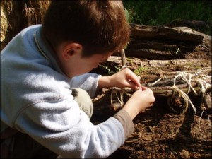 Certificate in Outdoor Learning